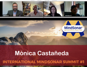 Screen-Shot-2018-06-29-at-15.44.38-300x232 International Mindsonar E Summit